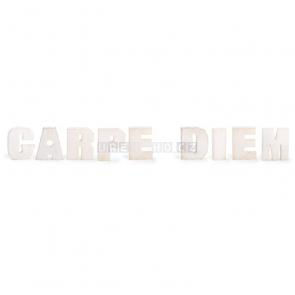 Carpe diem dekorácie nápis